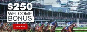Horse Racing Betting at Bovada Racebook